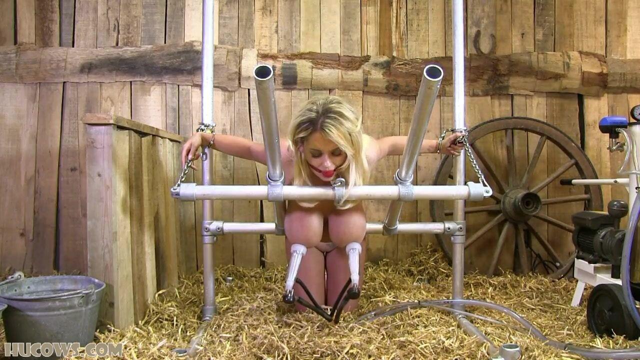 Смотреть Порно Дойка Молока